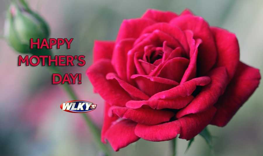 Happy Mother's Day! This weekend is all about mom and we're proud to show you our favorite pics with mom!