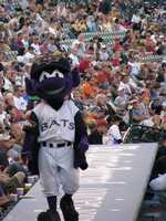 14. Go to a Bats gameThe Louisville Bats games are the definition of family fun! Home games run through September and admission is around $12