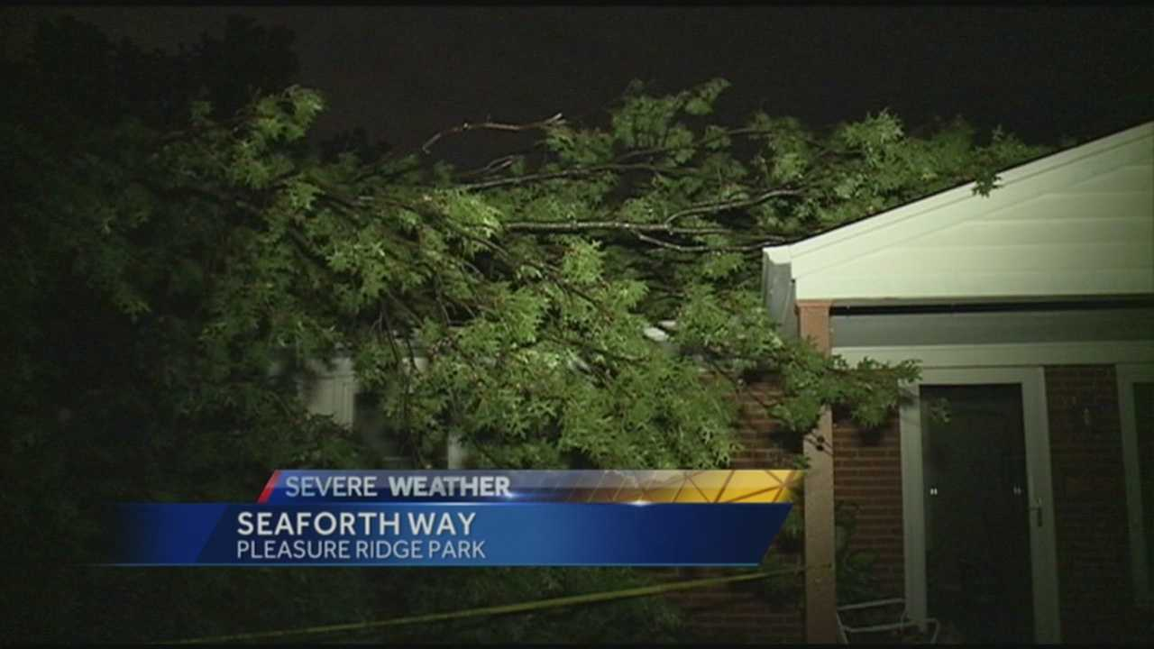 There were downed trees and power outages after a storm moved through the area.