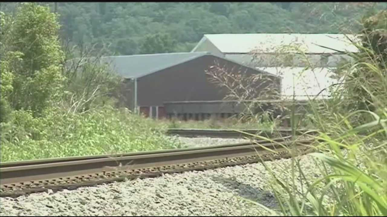A man is dead after he was hit by a train in Shepherdsville on Wednesday.