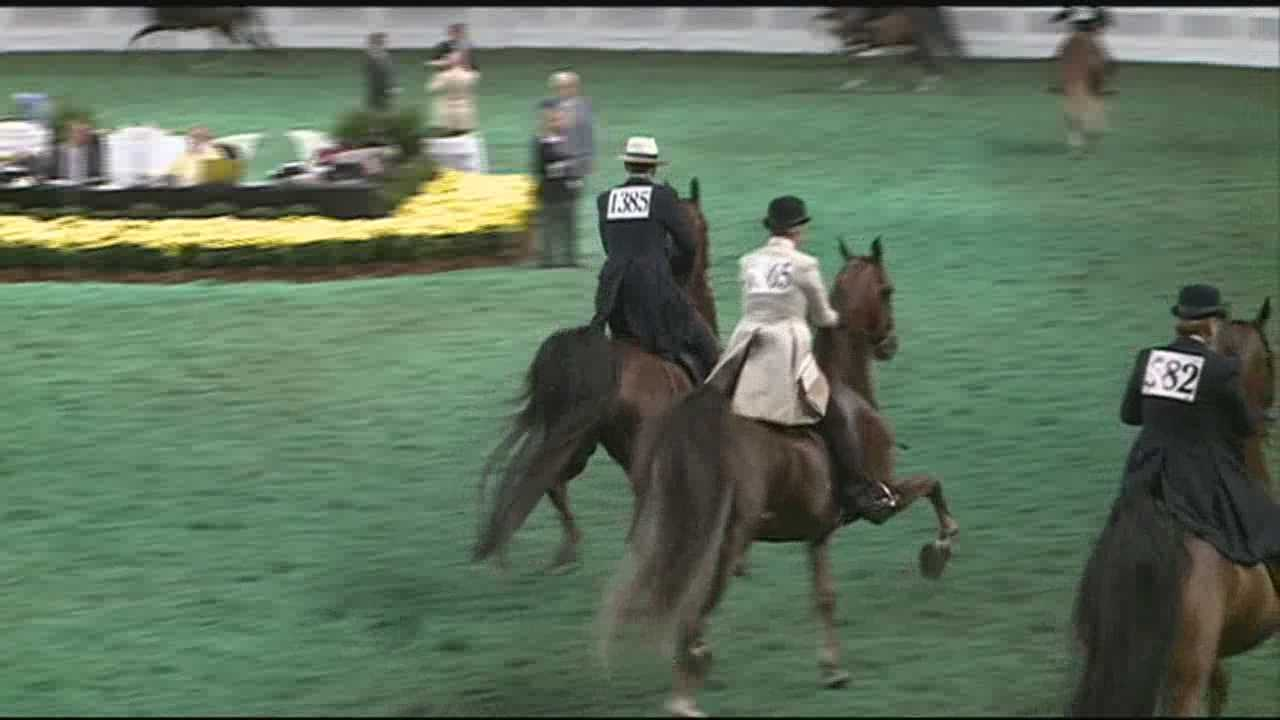 img-World Championship Horse Show in full swing at Kentucky State Fair