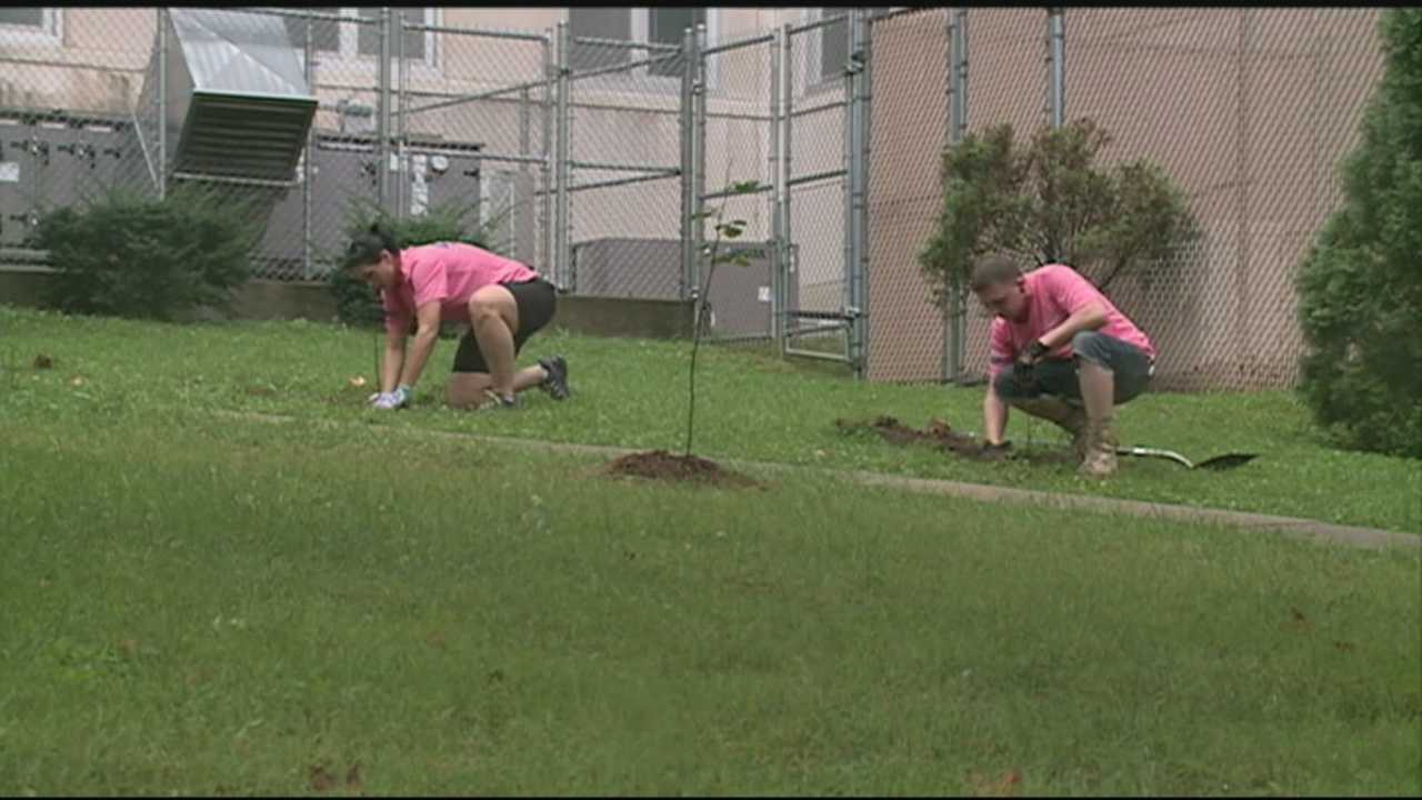 Volunteers gathered for a day of service to honor victims of the Sept. 11 terrorist attacks.