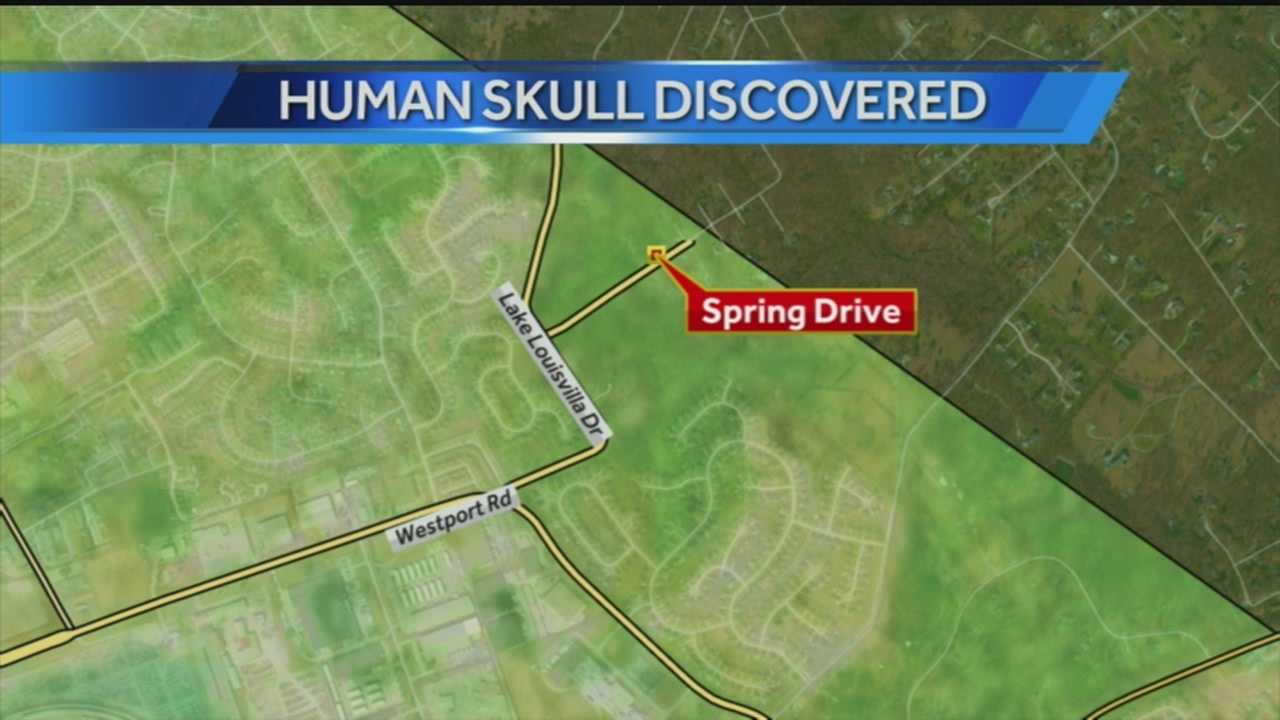 Human skull discovered at construction site likely at least 7 years old