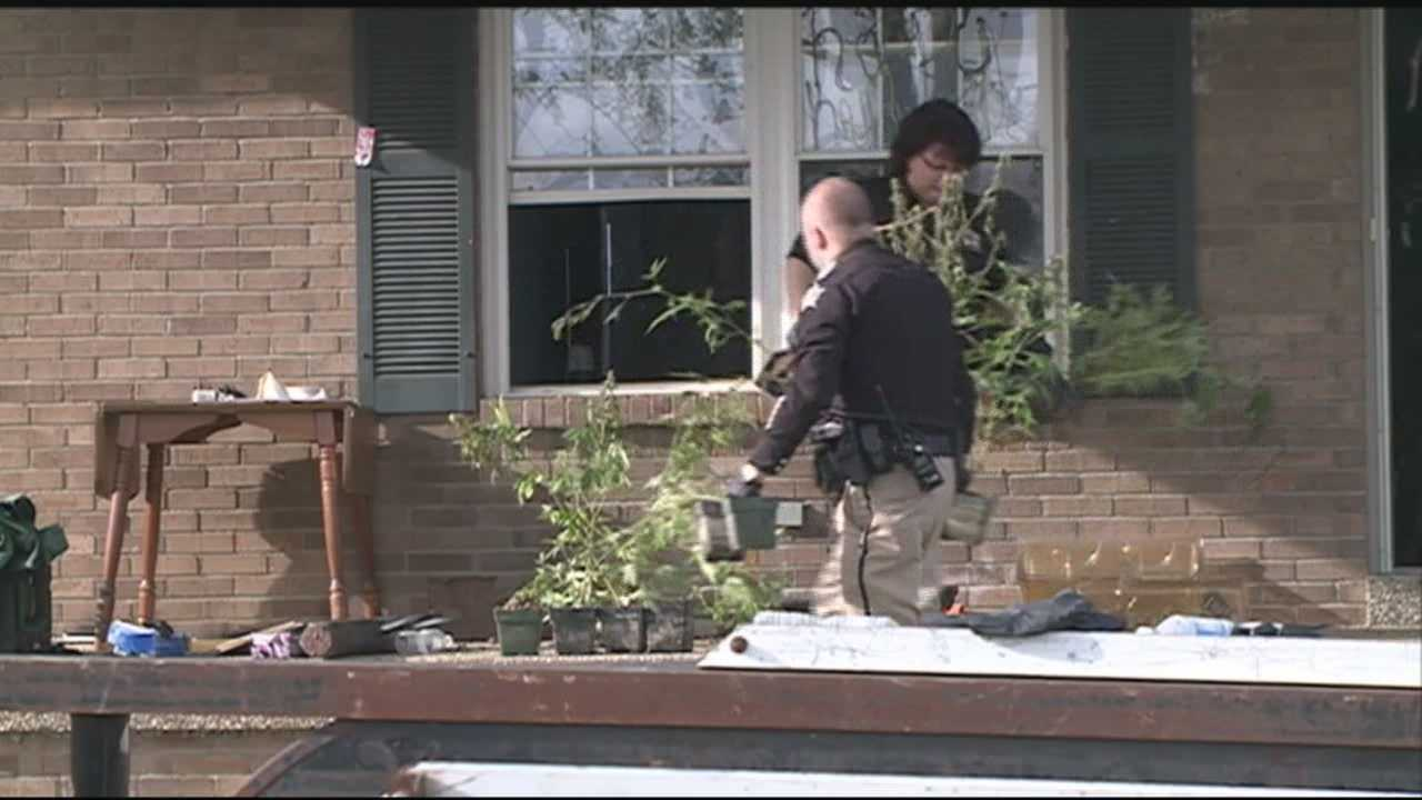Sheriff's deputies seize more than 1,000 marijuana plants from Spencer County home