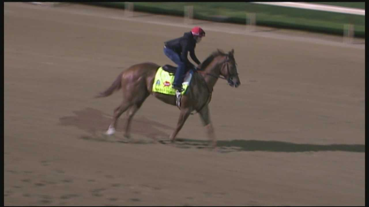 The Derby will be War Story's first race at Churchill Downs since his maiden start in November.