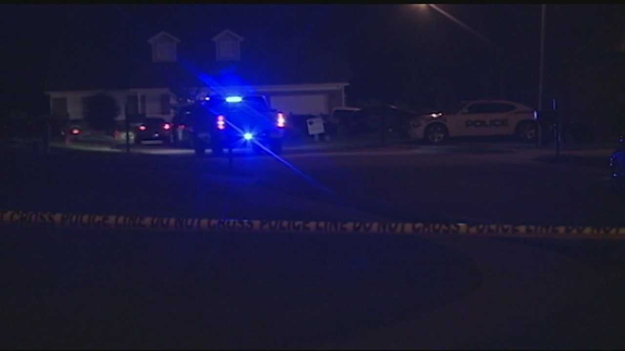 Friends: Custody arrangements may have prompted deadly shooting