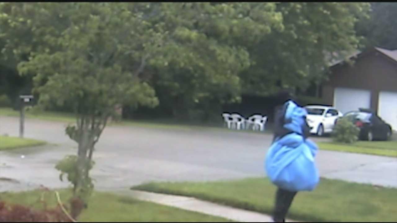 Neighbor's security cameras capture burglar in action