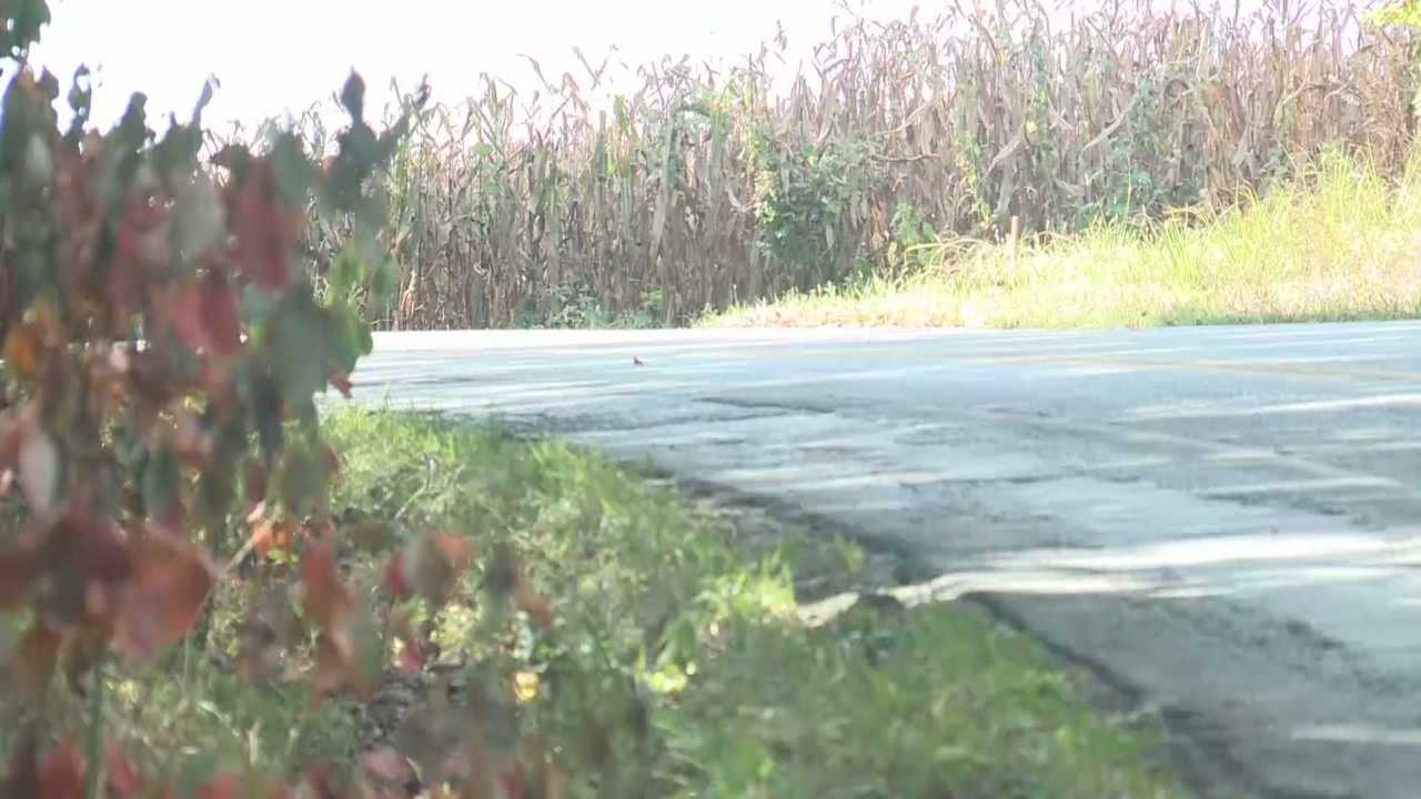 A 17-year-old girl died in a Thursday morning crash in Nelson County.