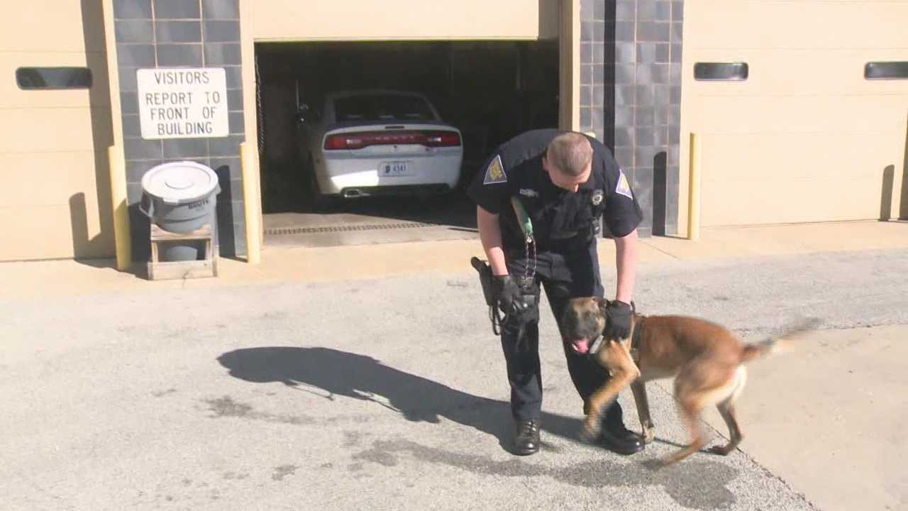 ISP new K9 bringing in great results
