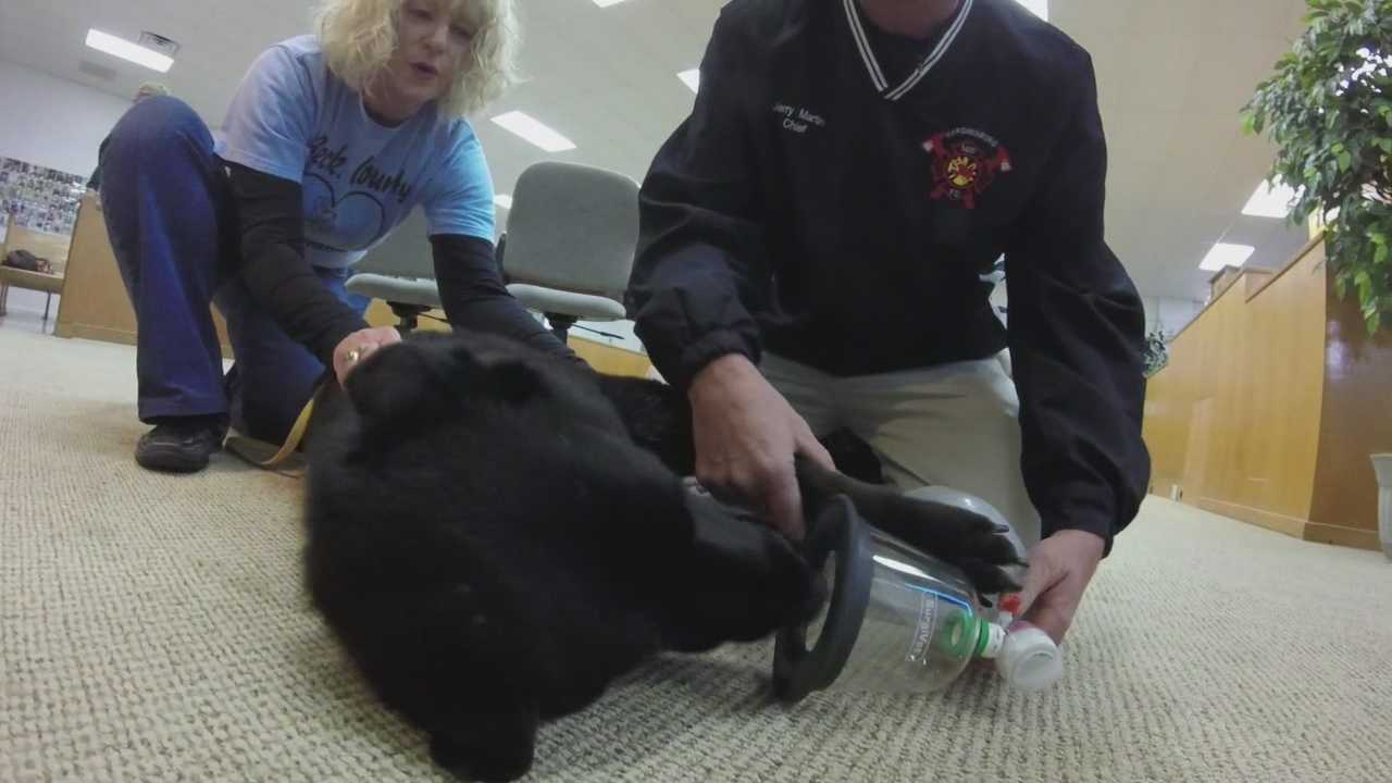 Breckinridge County raises money for animal resuscitation kits