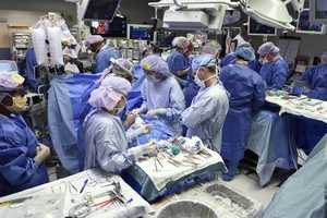 Babies during surgery