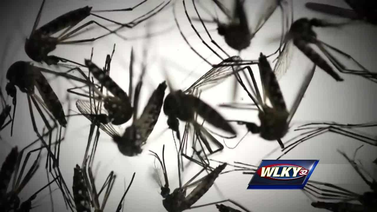 First case of Zika reported in Kentucky