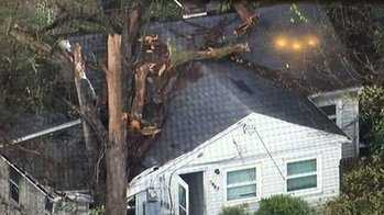 Tree on house in Shively