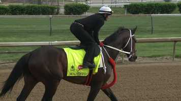18. Majesto – Jockey Emisael Jaramillo