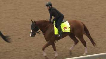 10. Whitmore – Jockey Victor Espinoza