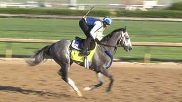 14. Mohaymen – Jockey Junior Alvarado