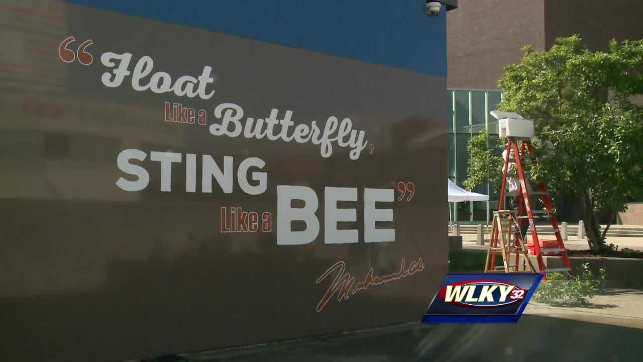 """A swarm of bees showed up Sunday morning in a tree next to the """"Float Like a Butterfly, Sting Like a Bee"""" mural across from the Muhammad Ali Center."""