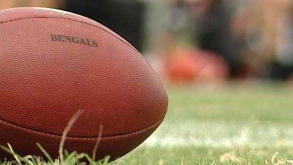 Bengals Football Generic - 29123872