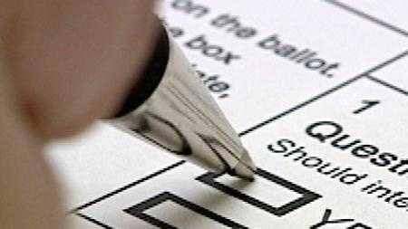 Voting2 - 15233083