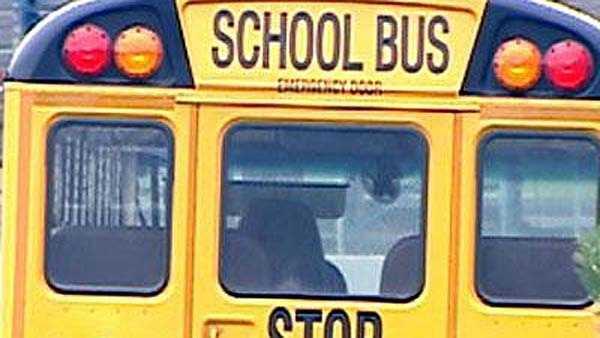 School Bus Rear Generic - 14763877