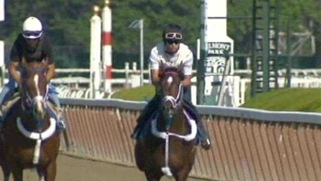 Local racetracks still plan Belmont Stakes parties despite I'll Have Another being pulld from the race.