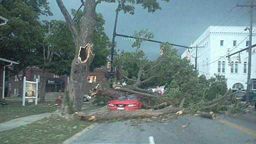 Tree down on a car in Hillsboro.