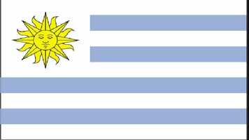 9. Uruguay has 31.8 guns per 100 citizens.