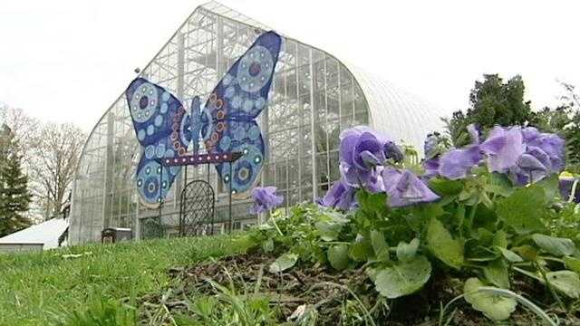 Get a peek inside The Krohn Conservatory's 2013 Butterflies of Morocco show. The show is open until the end of June.  For more information, click here.