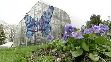33. Experience the butterfly exhibit at Krohn Conservatory.