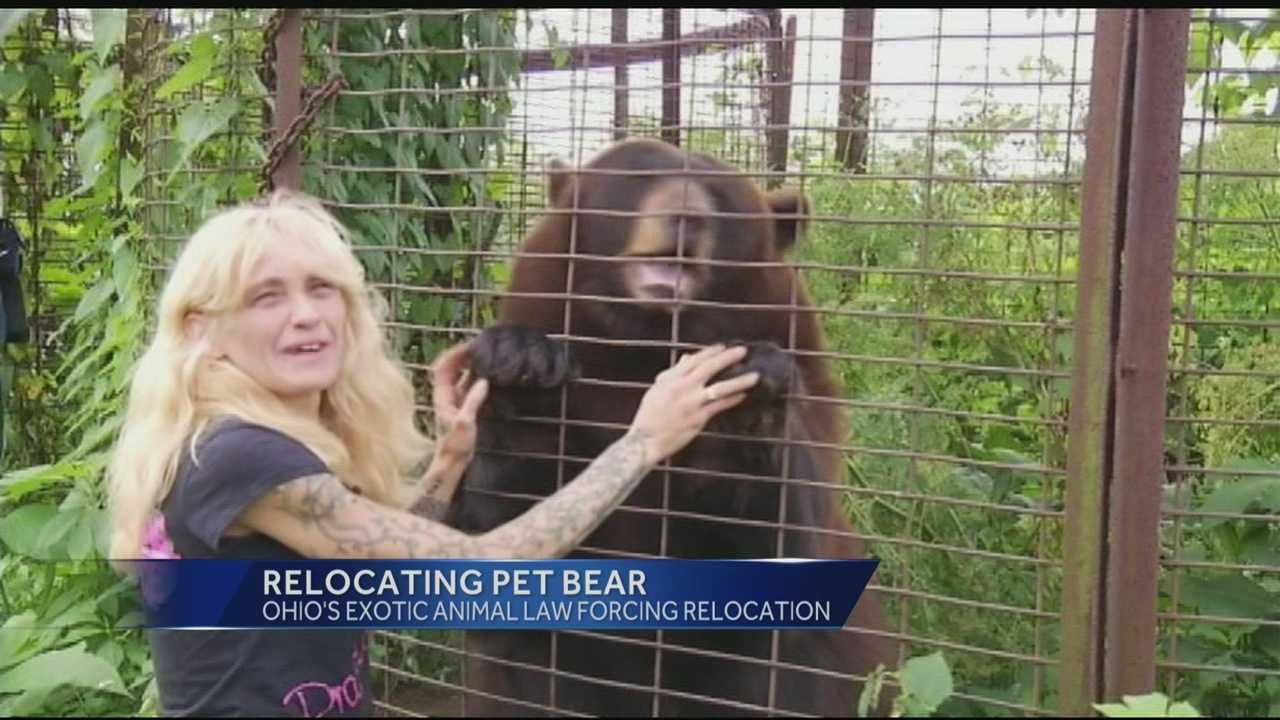 woman and pet bear