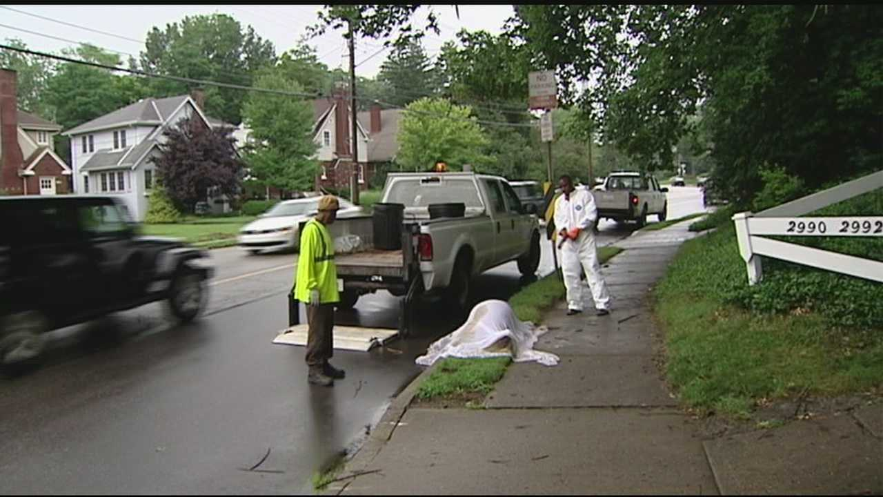 Some Hyde Park residents are fed up with how the city is handing the removal of dead animals.