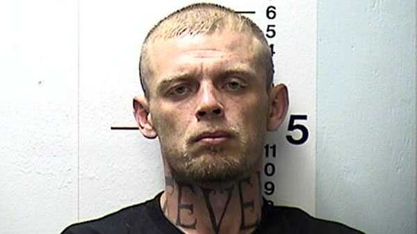 James Stevens, burglary suspect found hiding in tree.