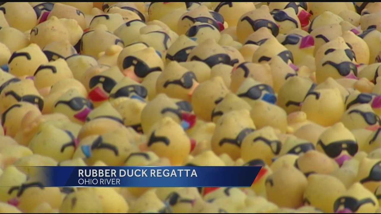 090113 Rubber duck regatta