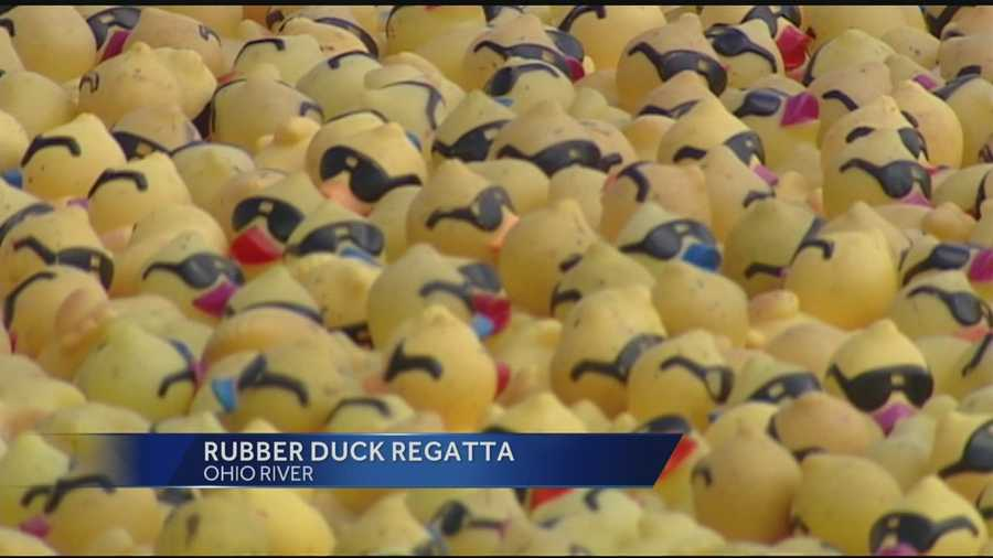 Rubber Duck Regatta in its 20th year helping hungry families