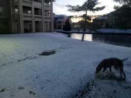 Send your snow photos to newsdesk@wlwt.com.