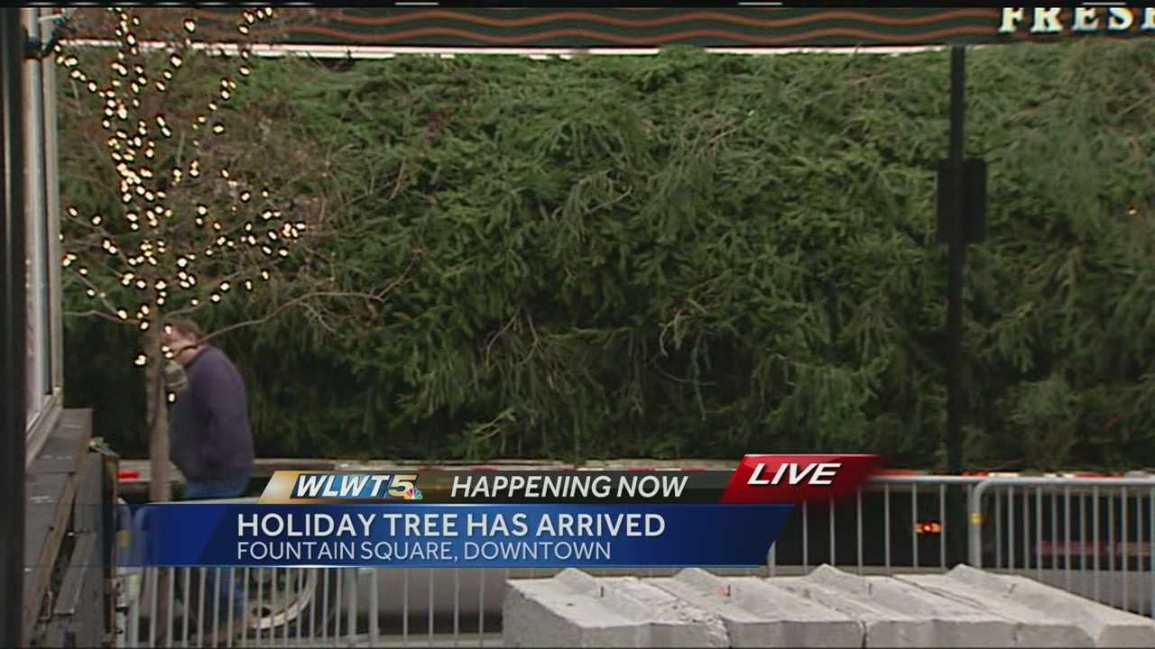 The replacement tree is a 55-foot Norway Spruce from Rittman, Ohio up near Akron.