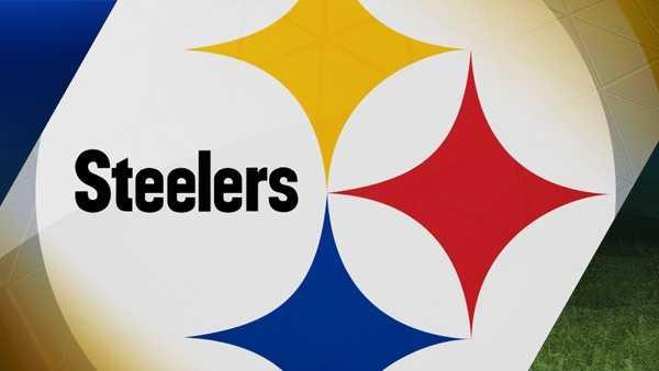 steelers logo generic