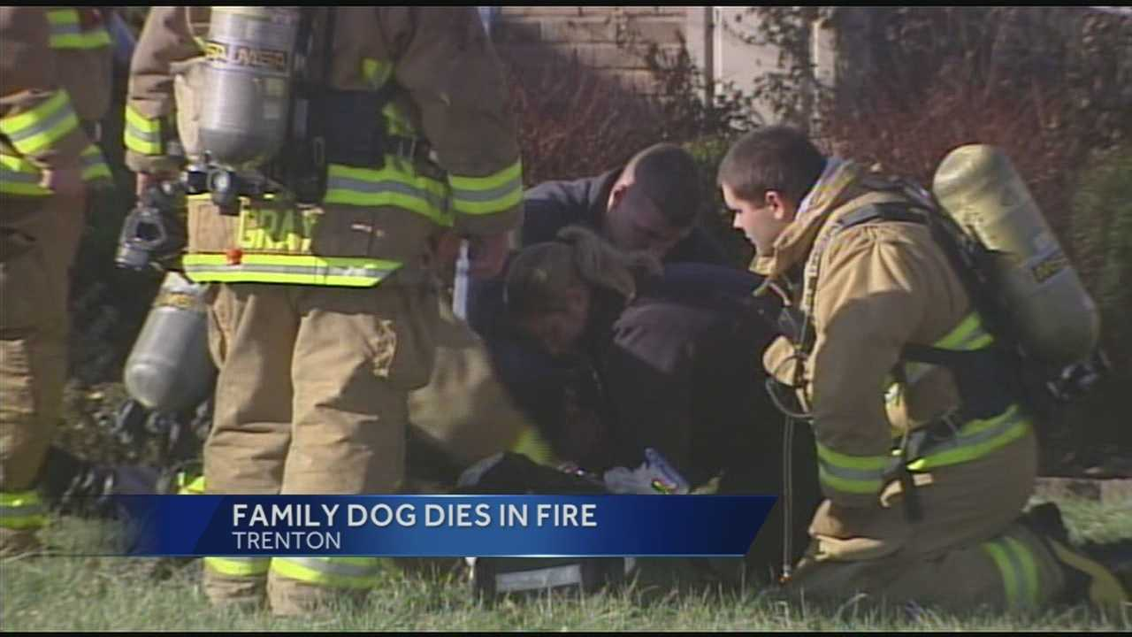 A family's dog died in a fire at a firefighter's house in Trenton.