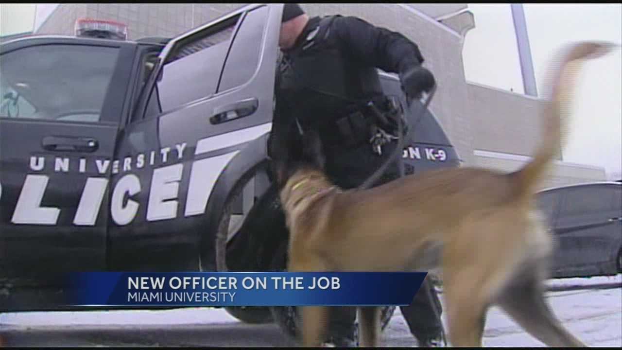 Figo, an explosion detection dog, is the newest addition to the Miami University police squad.
