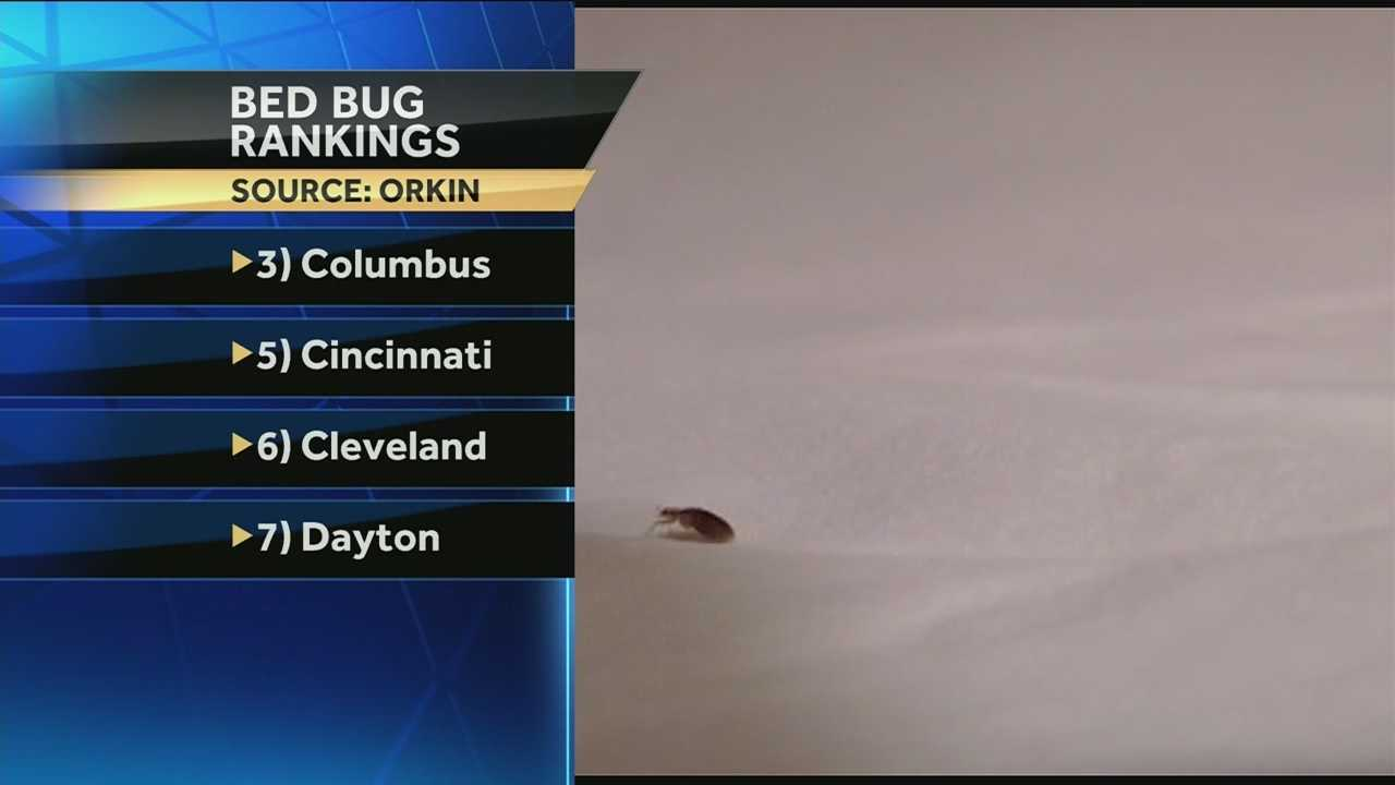 Cincinnati's not the bed bug capital of the nation anymore, but the pests are still a problem.