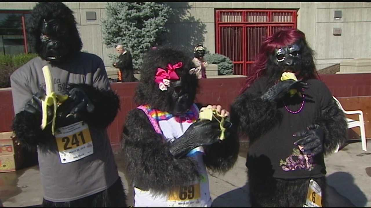 More than 400 people dressed in gorilla and banana costumes for the third annual Cincinnati Gorilla Run in support of the Mountain Gorilla Conservation Fund in Africa.