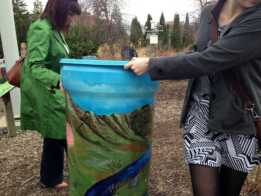 Rain barrels rolled out at the Cincinnati Zoo will be auctioned off later this month to raise money for environmental education.