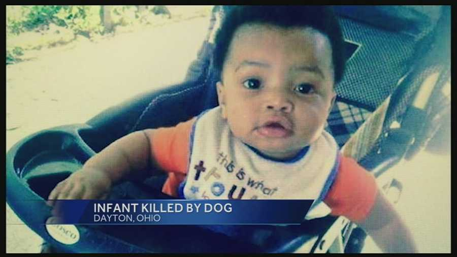 7-month-old attacked, killed by dog in Dayton