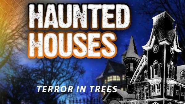Terror in the Trees - 444 Jacobs Cemetery Road, Lucasville, Ohio, 45648Dates for 2015: Sept 25-26, Oct. 2-3, 9-10,16-17, 23-24, 30-31Hours: Dusk til 11:30 p.m.Admission price: $10&#x3B; Coffin Ride - $5&#x3B; Combo Ticket/Ride - $13http://www.terrorinthetrees.com/
