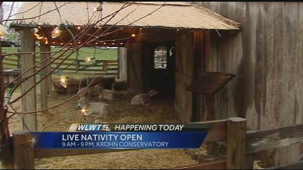 Live nativity scene @ Krohn Conservatory - 1501 Eden Park Drive, Cincinnati, OH 45202Dates: Dec. 12 - Jan. 3Hours: 9 a.m. to 9 p.m. dailyCost: Freehttp://www.cincinnatiparks.com/krohn