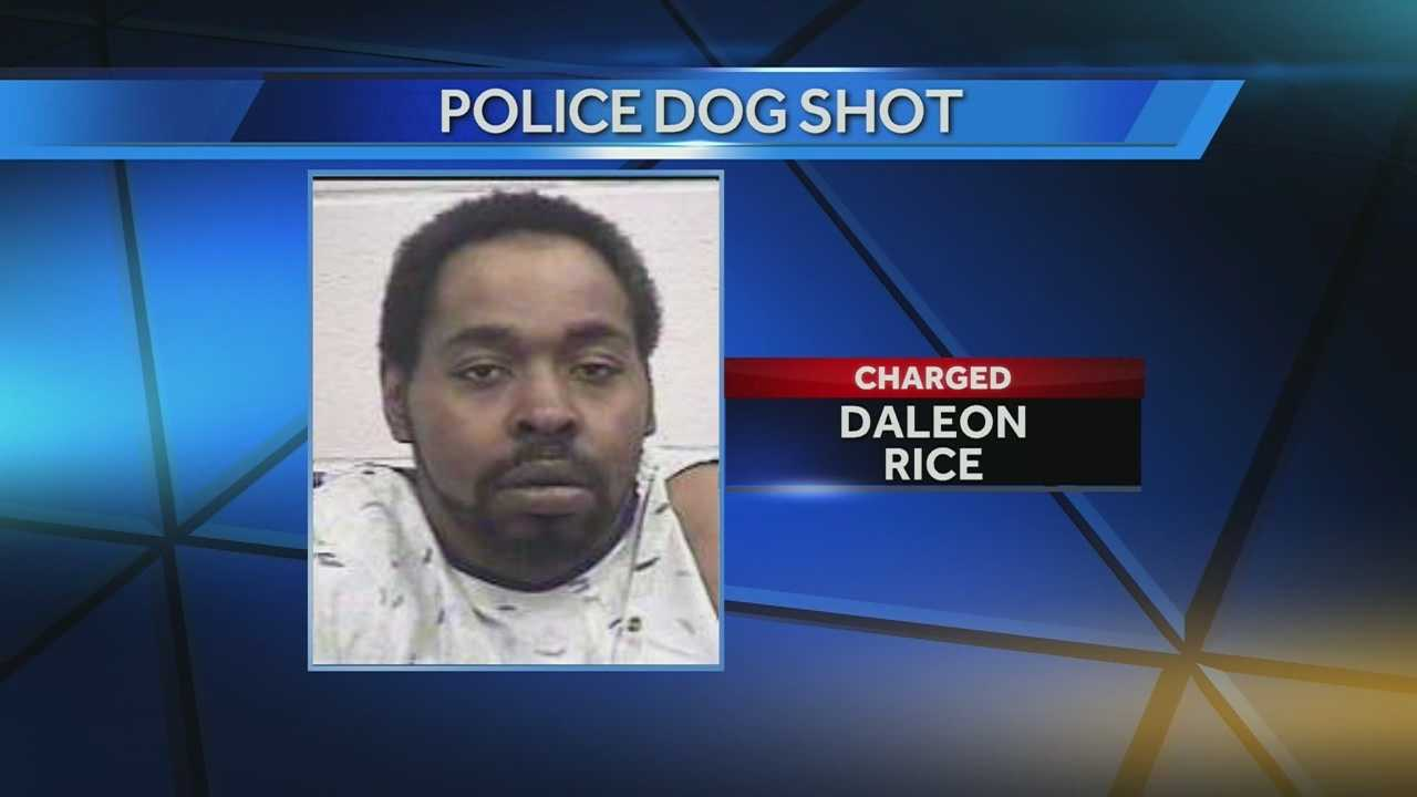 The man accused of shooting a Covington police dog and shooting at a Covington police officer was arraigned Thursday morning.