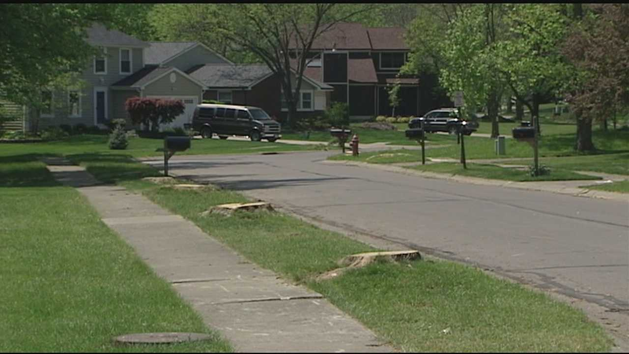 The emerald ash borer has been in the region, devastating trees since 2006. But now we're starting to see more of an impact to local neighborhoods. In Deerfield Township, Public Works began working with the Ohio Department of Natural Resources in 2014 to determine all of the dead and dying Ash Trees.