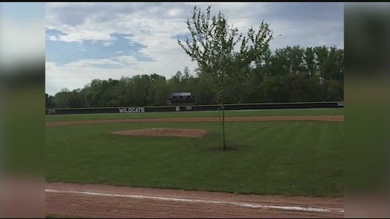 Franklin High School's Athletic Director, Brian Bales, received a call Saturday morning from the parks director about the tree.