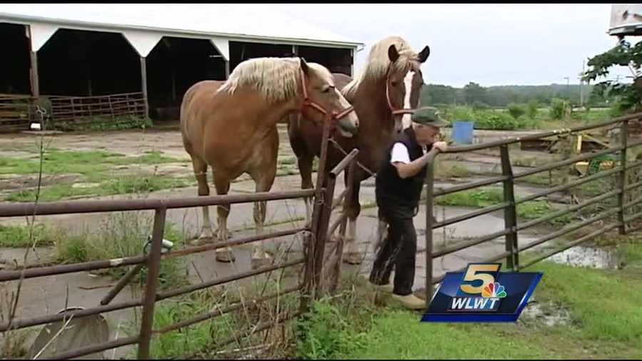 A Liberty Township farmer, his two horses and a caisson will provide Officer Sonny Kim his last ride to his final resting place.