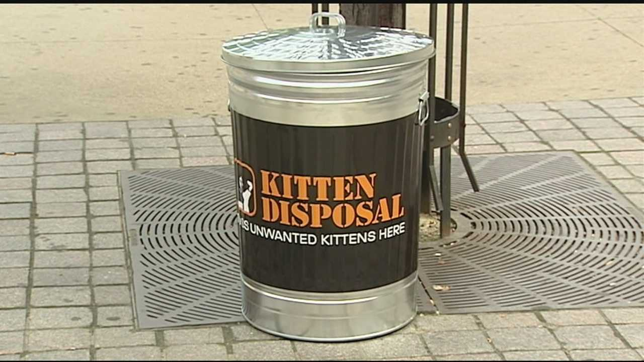 Using trash cans and audio recordings of a cat's meow, an new effort was made in Cincinnati on Friday to control the city's cat population.